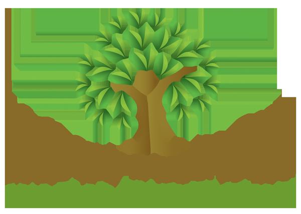 Mulberry Live In Care Ltd